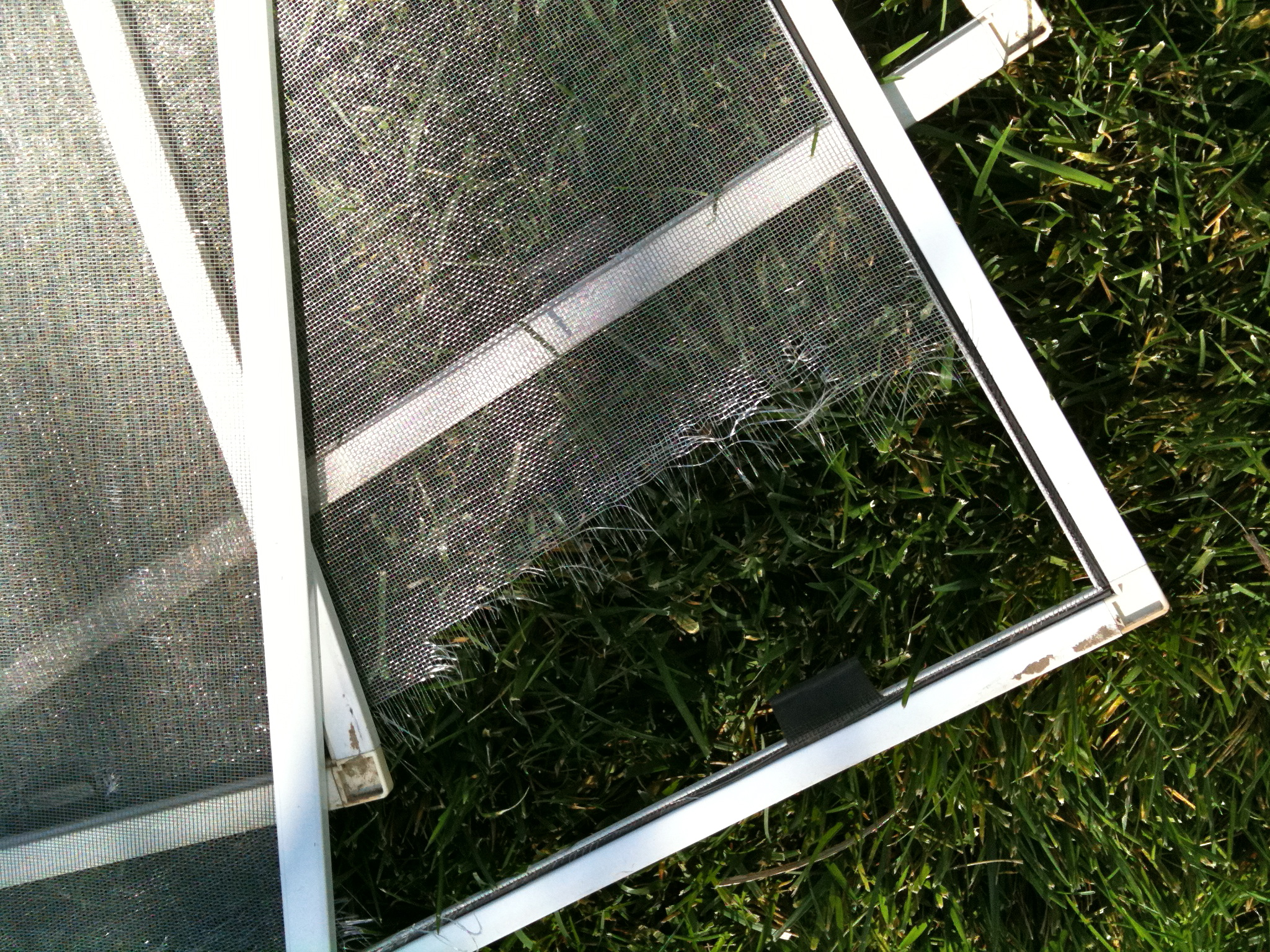 today - Window Screen Frames